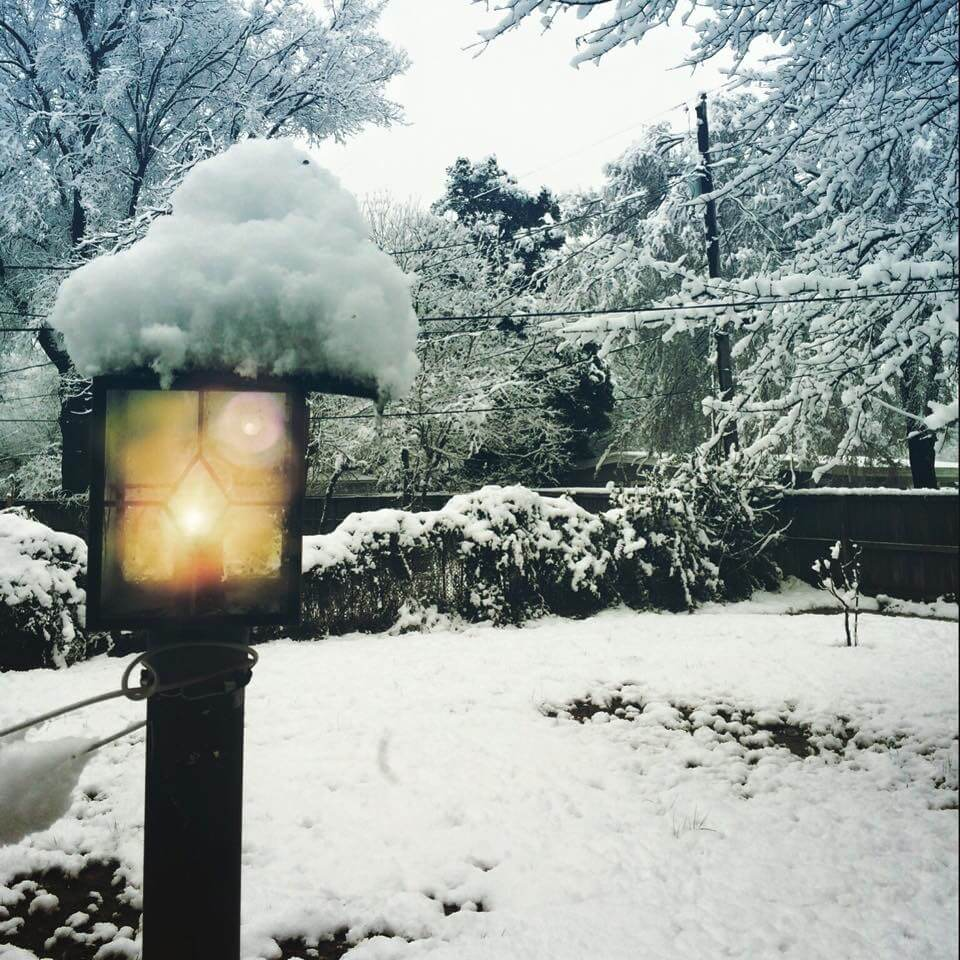 Security Lighting Options To Keep Your Holidays Safe